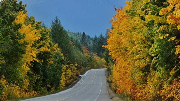Fall Automotive Maintenance